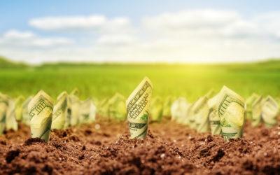 A new economy including nature's value? The Danone case.